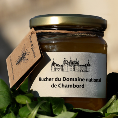 Miel de forêt de Chambord